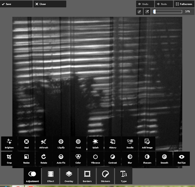 REFLECTIONS: Another Free On-Line Photo Editor: PIXLR Express