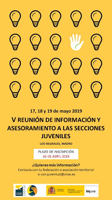 V Reunión de Información y Asesoramiento