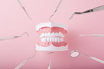 Regrow Teeth Naturally Teeth in 2 Months
