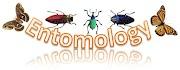 Entomologi