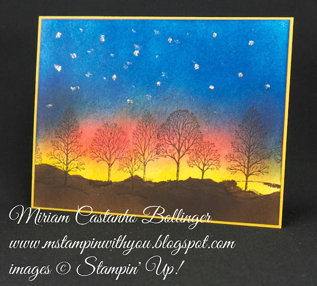 Miriam Castanho-Bollinger, #mstampinwithyou, stampin up, demonstrator, dsc, all occasions card, lovely as a tree, sponging, glitter, su