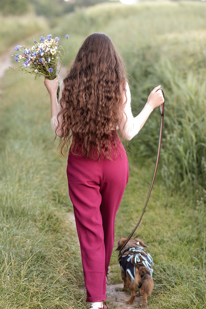 pants, spodnie, paperbag, stradivarius, village, shoes, new balance, fashion, outfit, dog, walking, cashmere, sweather, field flowers