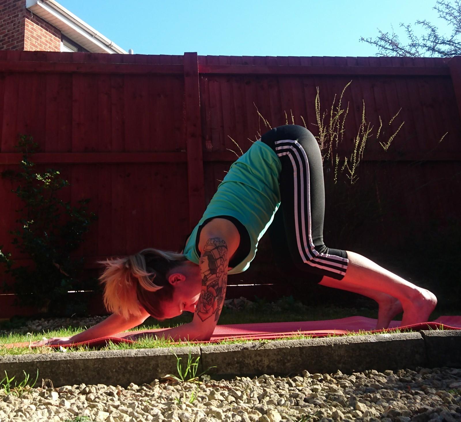 Rachel Preston Yoga A little downward facing dog spotlight and ...
