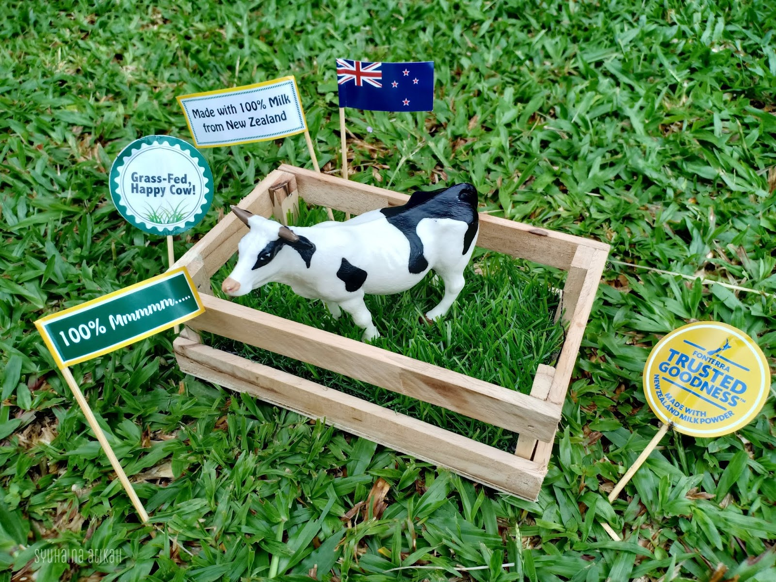 Susu Fernleaf 100% Peratus Dari New Zealand