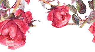 l'essence de rose