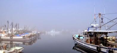 淡路市 霧の仮屋漁港