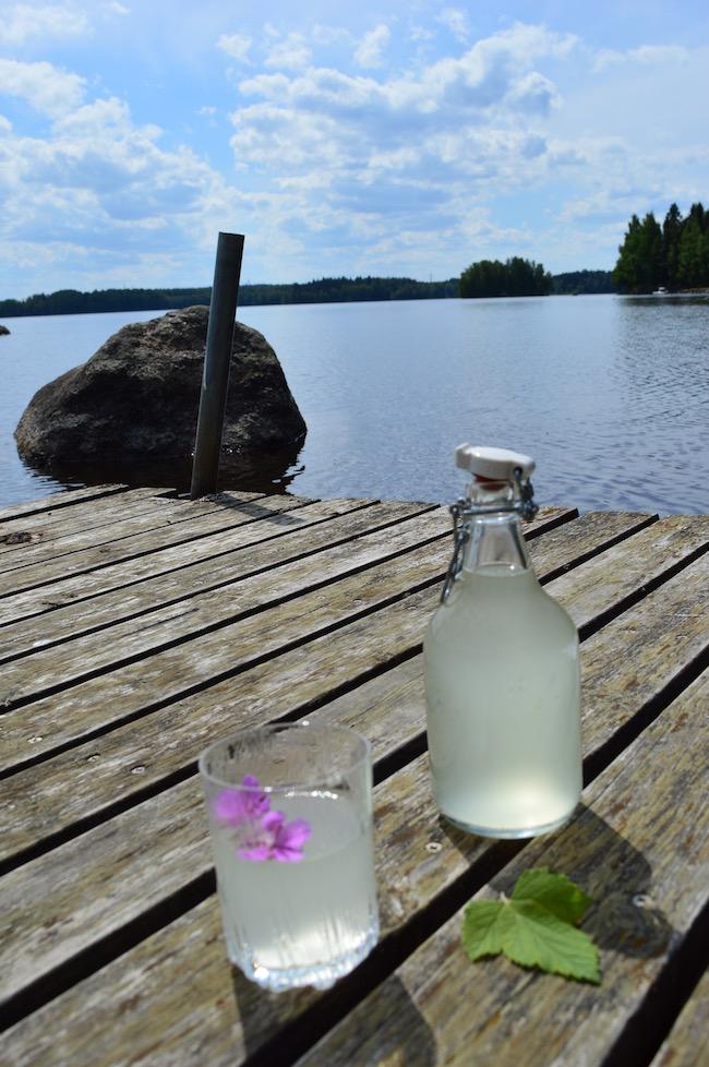 Louhisaaren juoma, mustaherukka