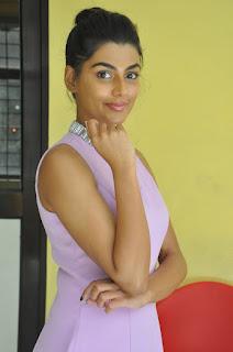 anisha ambrose okkadu migiladu interview stills 10