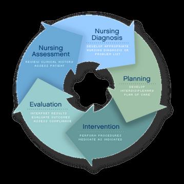 Roper–Logan–Tierney model of nursing