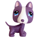 Littlest Pet Shop Blind Bags Bull Terrier (#2448) Pet