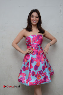 Actress Tamanna Latest Images in Floral Short Dress at Okkadochadu Movie Promotions  0063.JPG