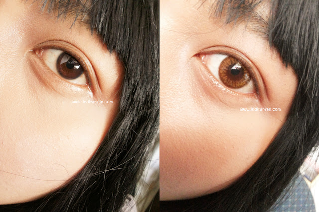 Bunny Color Brown, Bunny Color Brown Lenses, Bunny Lens