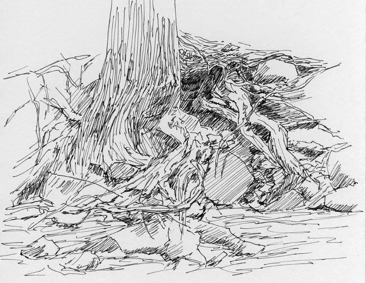 art sketch pen ink plein air nature mountain nature