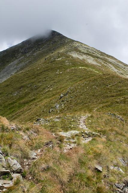 Wanderung vom Ingeringgraben über den Schmähhausrücken auf den Hochreichart. - Blick auf den Gipfel