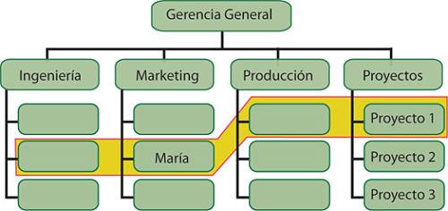 Organizacion Por Proyectos Tipos Caracteristicas