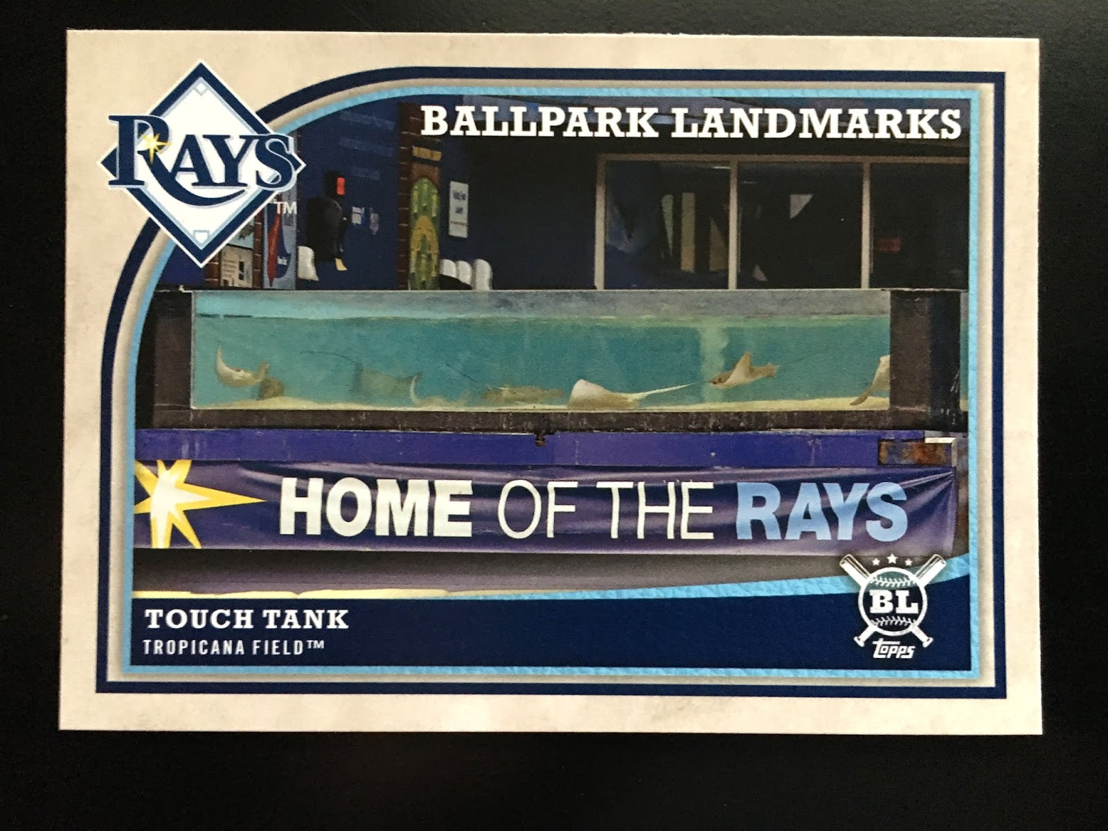 Cardboard Clubhouse Around The Horn Tampa Bay Devil Rays