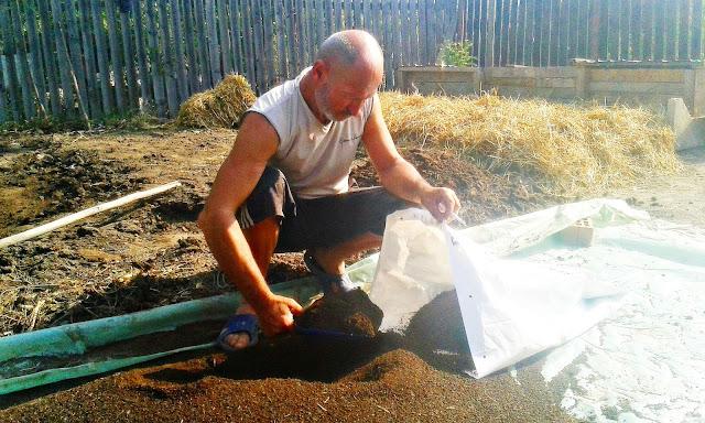 imagini cu compost