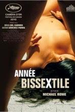 Poster du film Année Bissextile en streaming VF