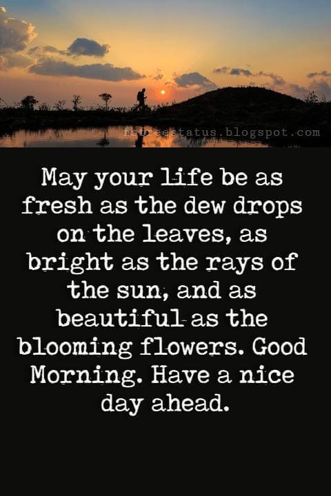 Good Morning Text Messages, May your life be as fresh as the dew drops on the leaves, as bright as the rays of the sun, and as beautiful as the blooming flowers. Good Morning. Have a nice day ahead.