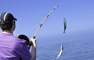 صيد السمك بالسنارة او القصبة
