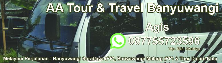 Mobil Travel Perjalanan Banyuwangi