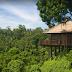 Pergi Liburan Sendirian? Nikmati Beragam Aktivitas Menyenangkan Di Hotel Alila Ubud