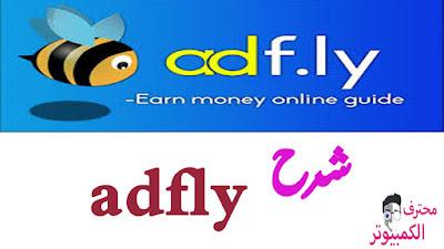 شرح مفصل لطريقة ربح المال من موقع  adfly