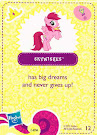 My Little Pony Wave 5 Skywishes Blind Bag Card