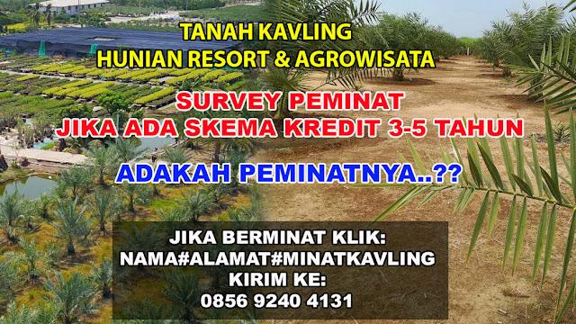TANAH KAVLING KAMPUNG KURMA SKEMA KREDIT 3 - 5 TAHUN (SURVEY PEMINAT)
