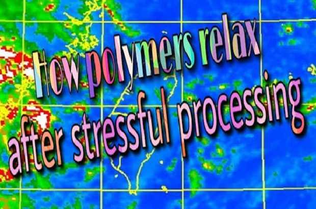 Stress Relaxation Processes