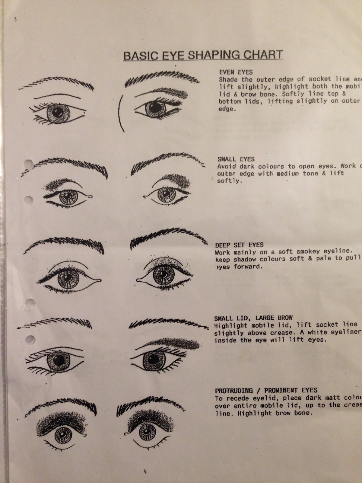 How To Apply Eyeshadow Diagram 1972 Chevelle Wiring Parts Of The Eye For Makeup Saubhaya
