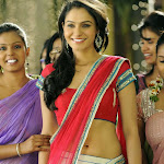 Andrea Jeremiah   Hot New Photos in Saree Navel Show