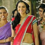 Andrea Jeremiah   Hot New Photos in Saree Navel Show