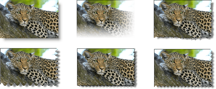 Different types of photo edges