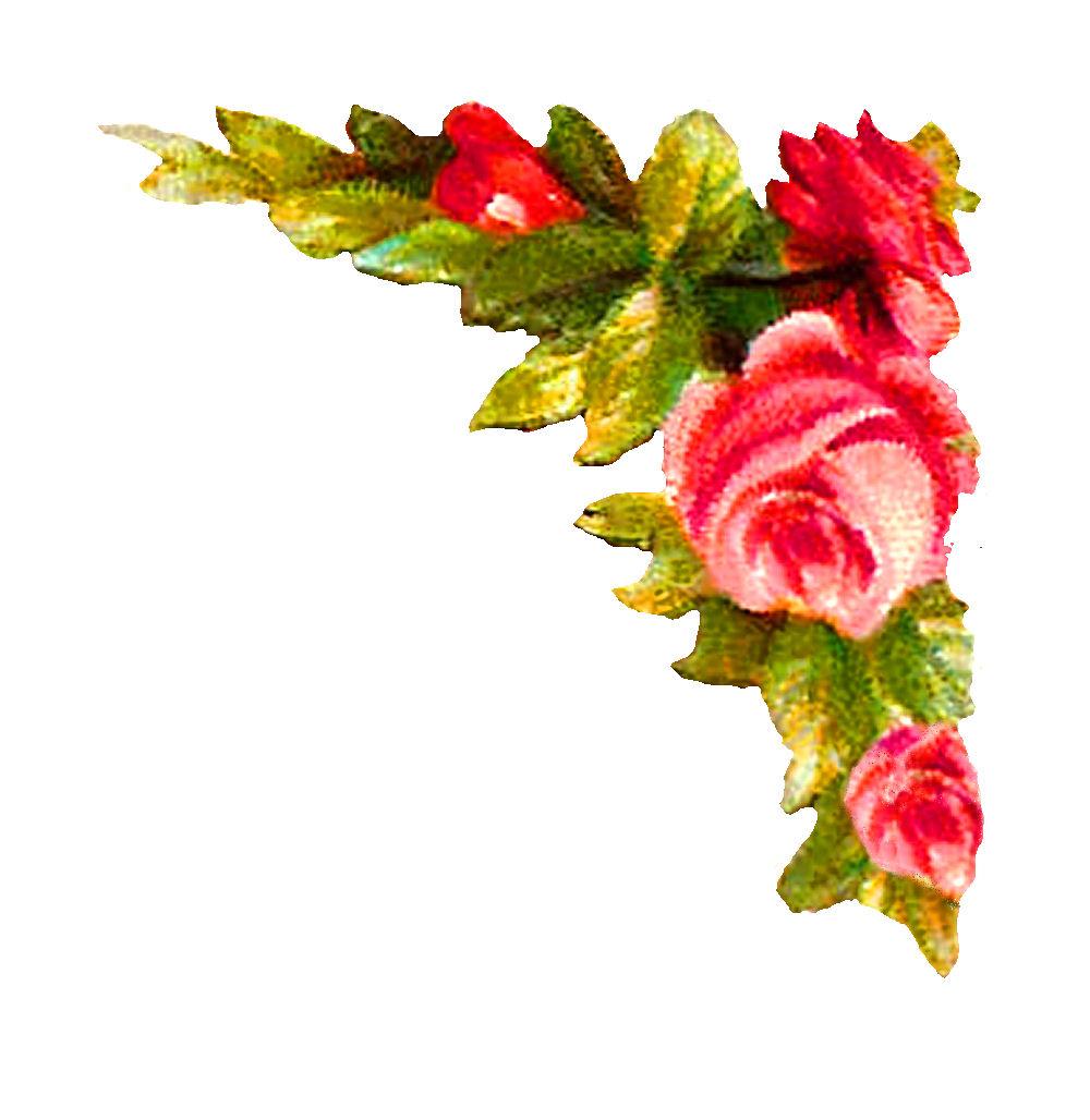 Digital Rose Corner Design Printable Flower Clip Art