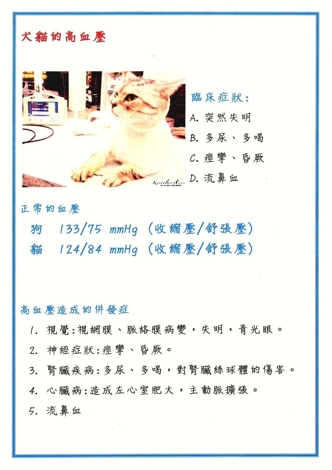 臺中市寵物醫院-巷弄動物醫院(原凱文兄弟動物醫院): 犬(狗)貓(寵物)的高血壓