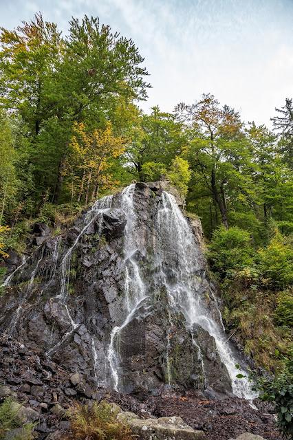 Drei-Täler-Tour  Themenwanderweg Bad Harzburg  Wandern im Harz  Baumwipfelpfad - Radauwasserfall - Eckertalsperre 06