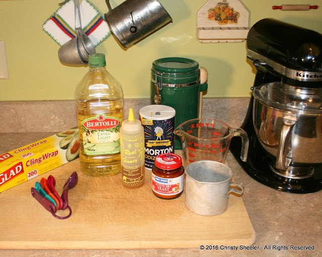 Ingredients set out on counter.  Party Pizza recipe ingredients: flour, salt, yeast, honey, warm water, olive oil.