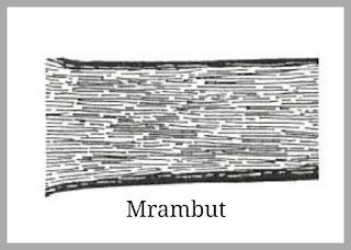 PAMOR MRAMBUT
