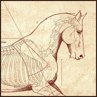 """""""DaVinci Horse Canter"""""""