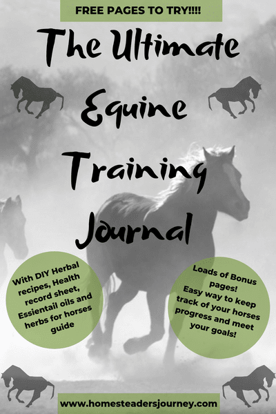 Training Horses with a plan! This journal helped me reach my goals with my horse last year and beyond! Get organized and make your dream horse trained the way you want a reality! If I can do it so can anyone!!! #traininghorses #horsetrainingjournal