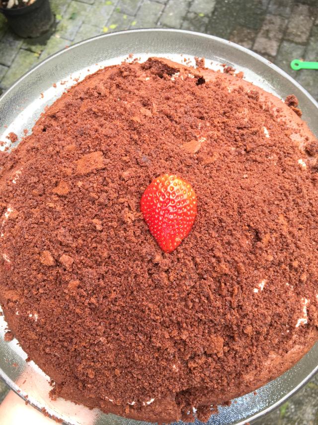 Maulwurfkuchen mit Erdbeeren statt Bananen, lecker!