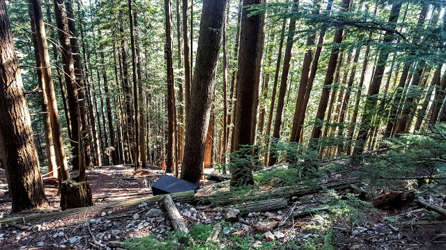 vancouver-grouse-grind-hike-1