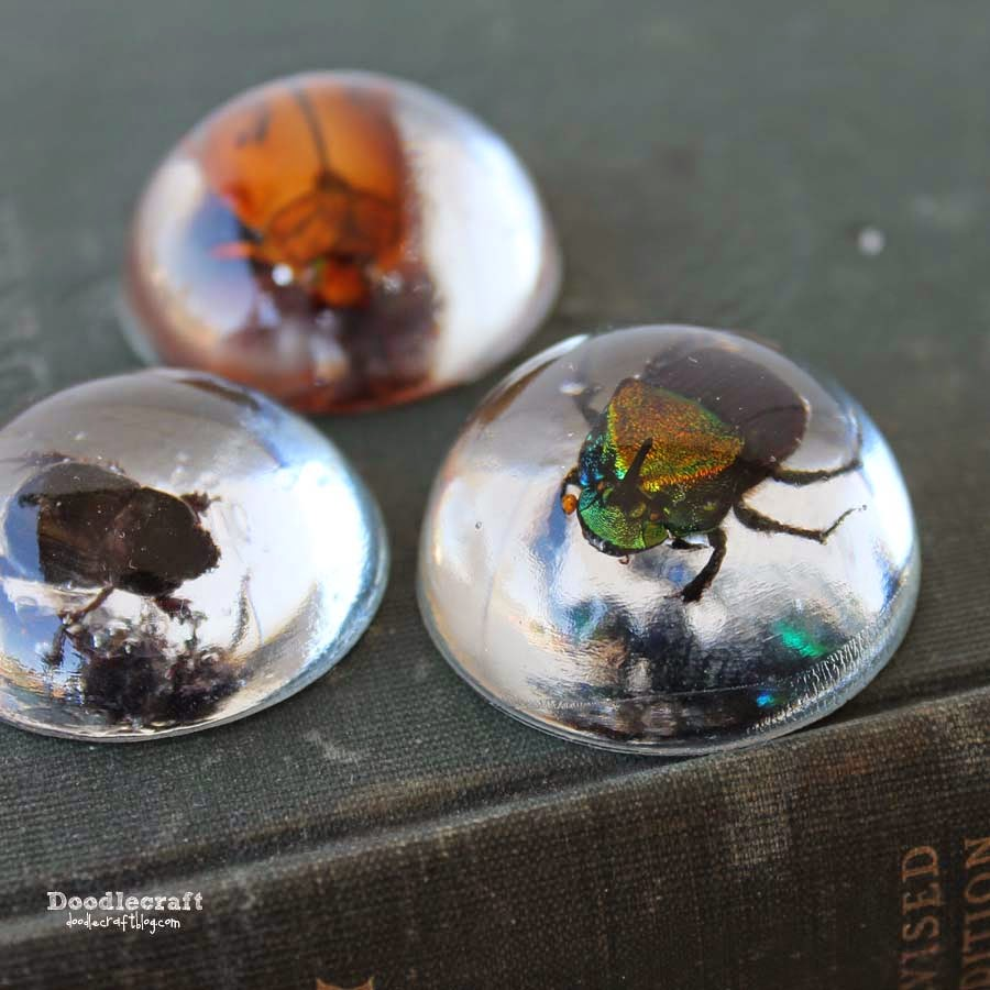 http://www.doodlecraftblog.com/2014/10/beetles-in-resin-jewelry.html