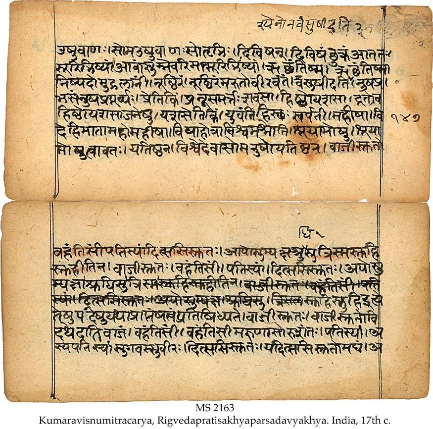 diferencia entre eyaculación precoz y disfunción eréctil en hindi
