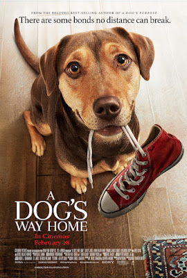 A Dog's Way Home: Film Review