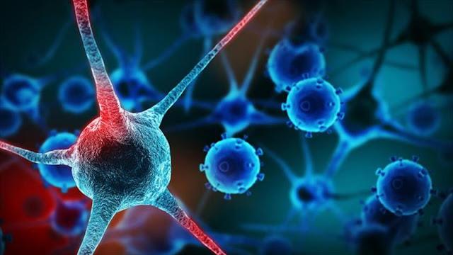 Ya existe medicina genética que hace efectiva vacuna contra cáncer