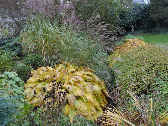 byliny jesienią