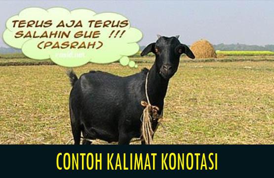 Contoh Kalimat Konotasi