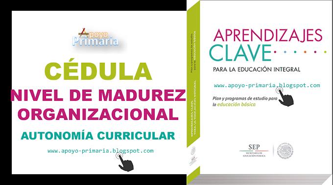 Cédula del Nivel de Madurez Organizacional de la Escuela